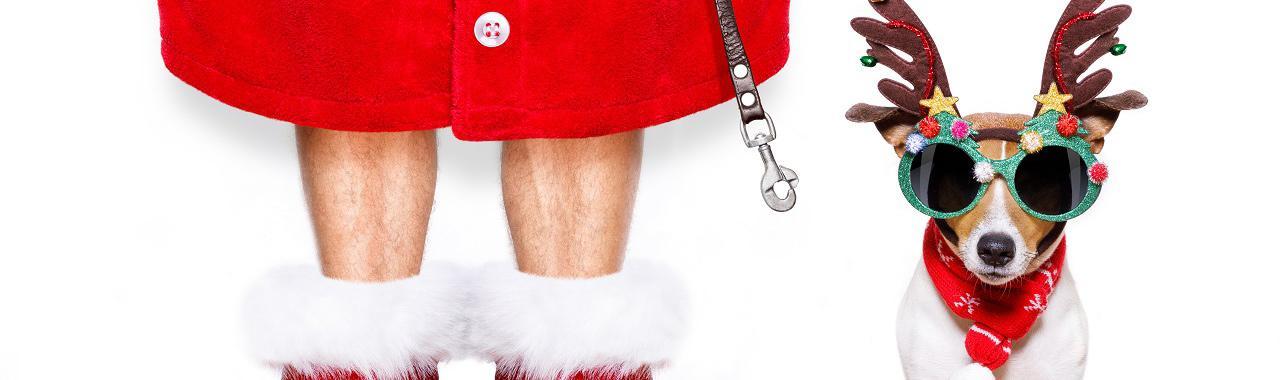 Karácsonykor támadnak az okosságok