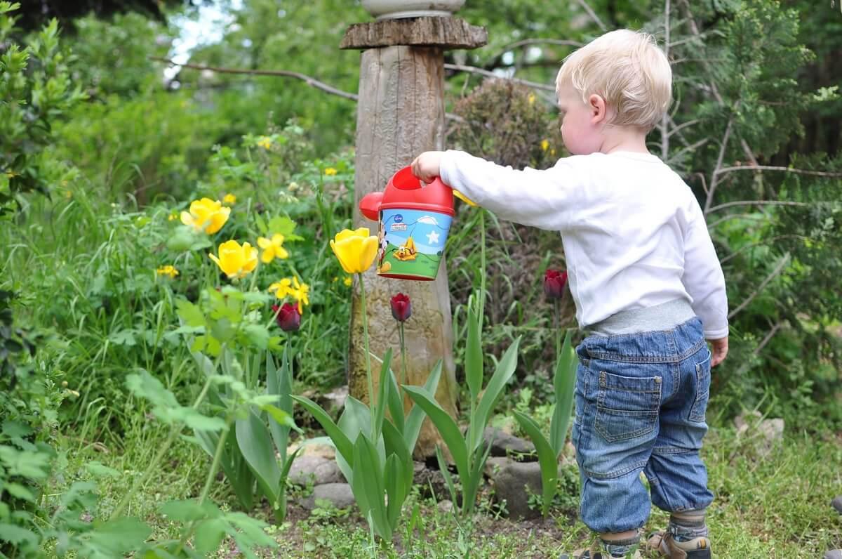 Jártamban, okos kertemben
